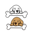 cute little puppy with bone vector image