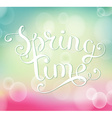 Spring time inscription vector image