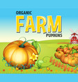 farm scene with pumpkin garden vector image
