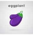 Two eggplants bunch vector image