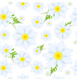 daisies pattern vector image vector image