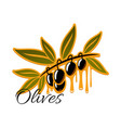 black olives branch icon vector image