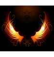fiery wings vector image