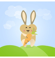 Easter rabbit with carrot vector image