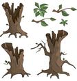 Set of dry trees cartoon vector image