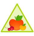 fruit triangle vector image vector image