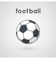 Soccer ball on a field vector image