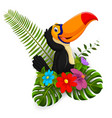 cartoon toucan with tropical flower vector image
