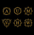 elegant gold monogram design on black background vector image