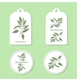 Sandalwood tree branch Tags and Labels vector image