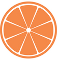 slice of citrus fruit vector image
