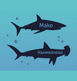 set of silhouettes sharks isolated on se vector image