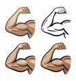 strong male arm hand muscles biceps icon or vector image