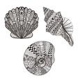 Zentangle stylized set seashells Hand Drawn vector image
