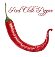 watercolor red chili peppers vector image