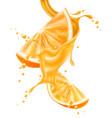 realistic orange juice splash slice vector image