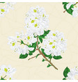 seamless texture twig white rhododendron vector image