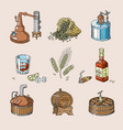 whiskey alcohol beverage brandy in glass vector image