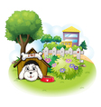 A white puppy inside a doghouse vector image vector image