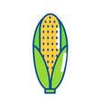 isolated corn design vector image