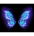 glowing butterfly wings vector image vector image