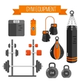 gym equipment Flat style vector image