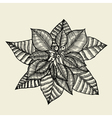 - Poinsettia vector image