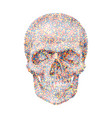 Geometric background with colorful skull vector image
