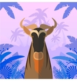 Horned Horse Gnu on the Jungle Background vector image