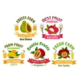 Exotic fruit and juice sign set for food design vector image vector image