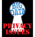 Big Data privacy security IT issues vector image vector image