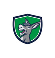 Donkey Head Shouting Crest Retro vector image vector image