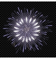 isolated fireworks on transparent vector image