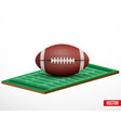 Symbol of a american football game and field vector image