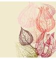 Floral background herbal set vector image