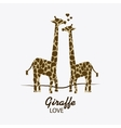 Giraffe icon Animal design Safari concept vector image