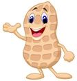 Cute peanut cartoon presenting vector image