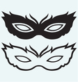 Masks for masquerade costumes vector image