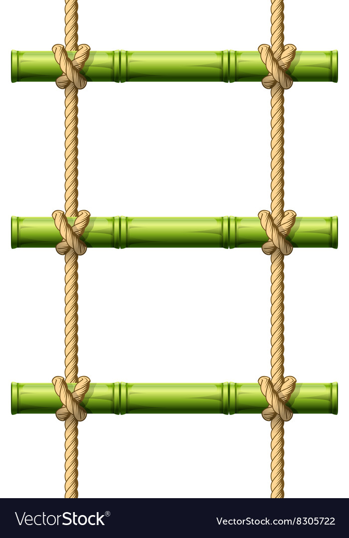 Bamboo rope ladder vector