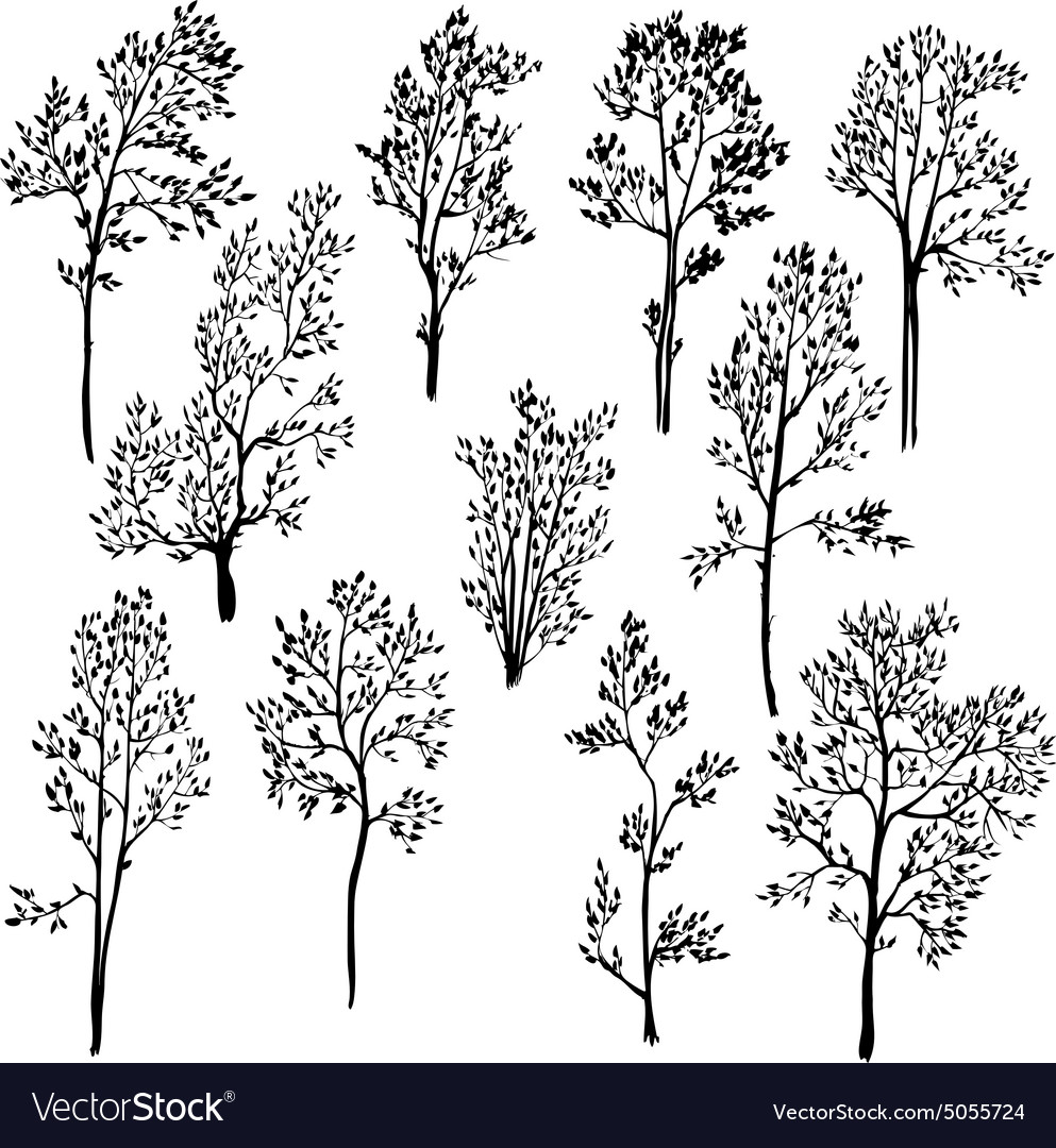 Set of different spring trees vector