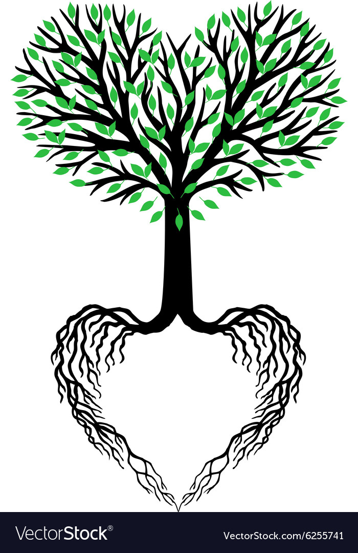 Tree of life heart tree vector