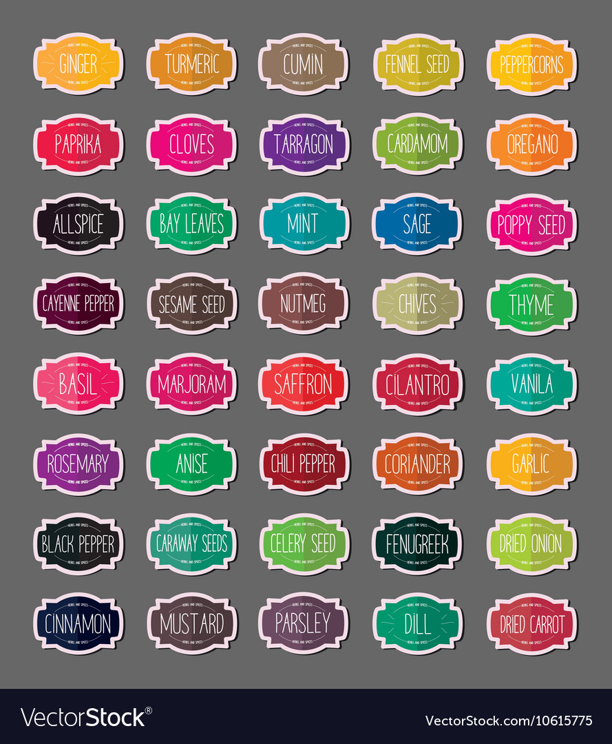 Herbs and spices stickers vector