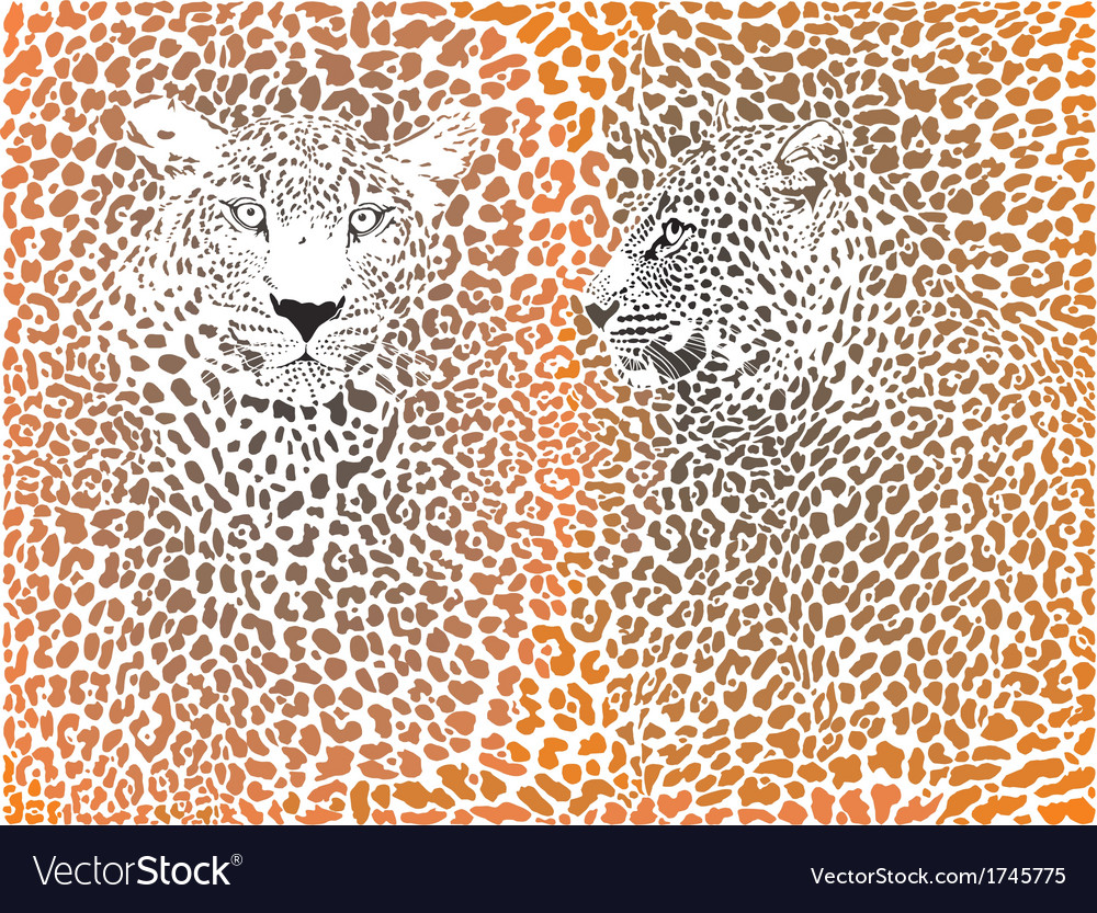 Leopard pattern with head stock vector