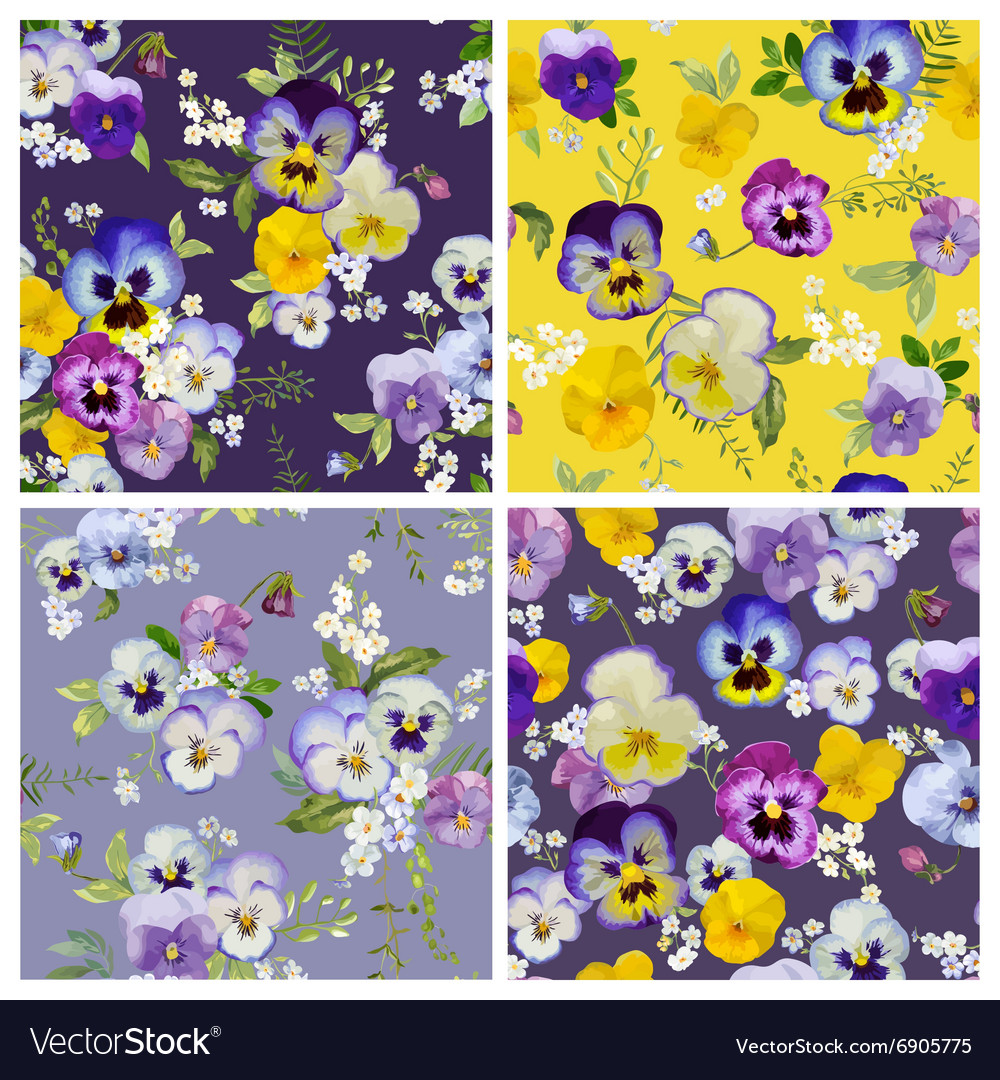 Pansy flowers background set  seamless pattern vector