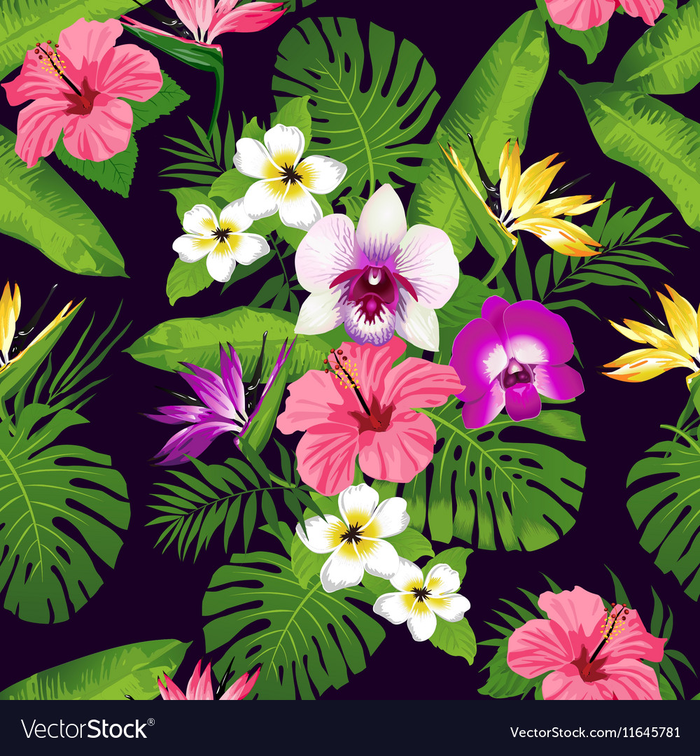 Tropic orchid dark vector