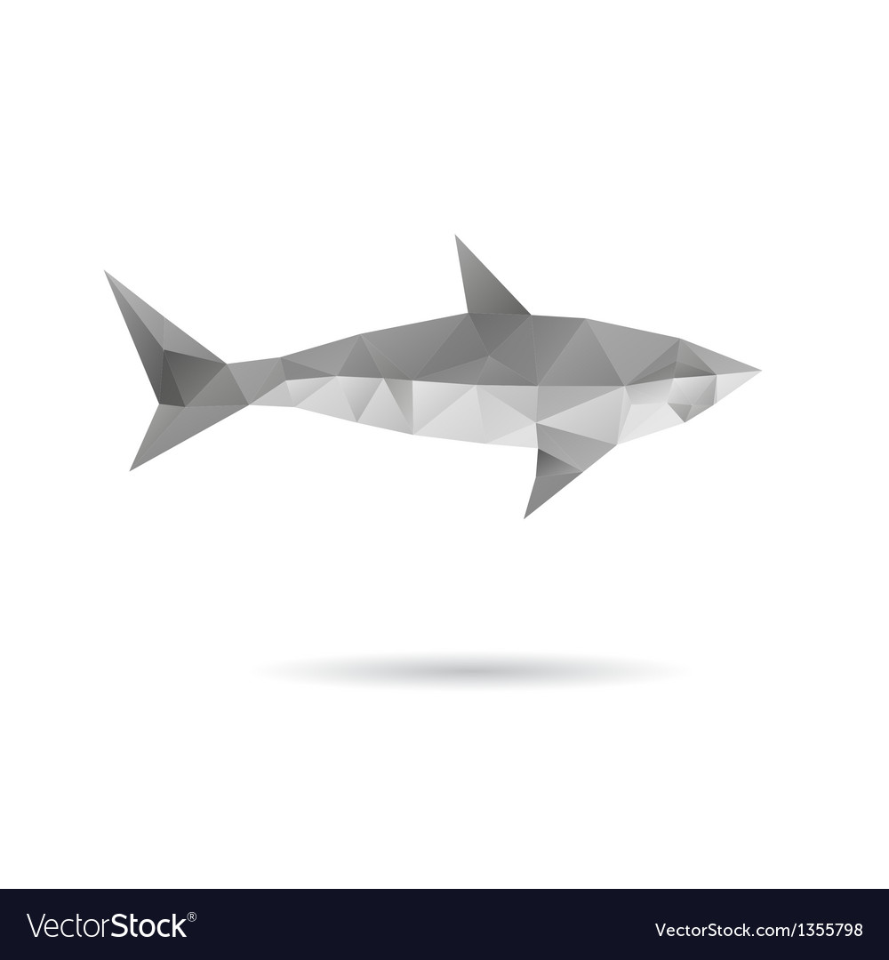 Shark isolated on a white backgrounds vector