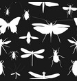 silhouettes set of beetles dragonflies and vector image vector image