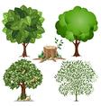Tree set vector image vector image