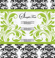 damask lime shower invitation card vector image vector image