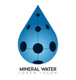 mineral water logo vector image